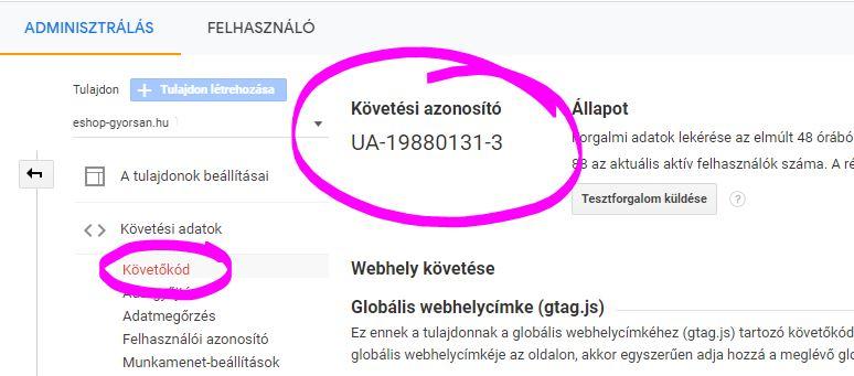 Követési azonosító Google analytics Zombeek